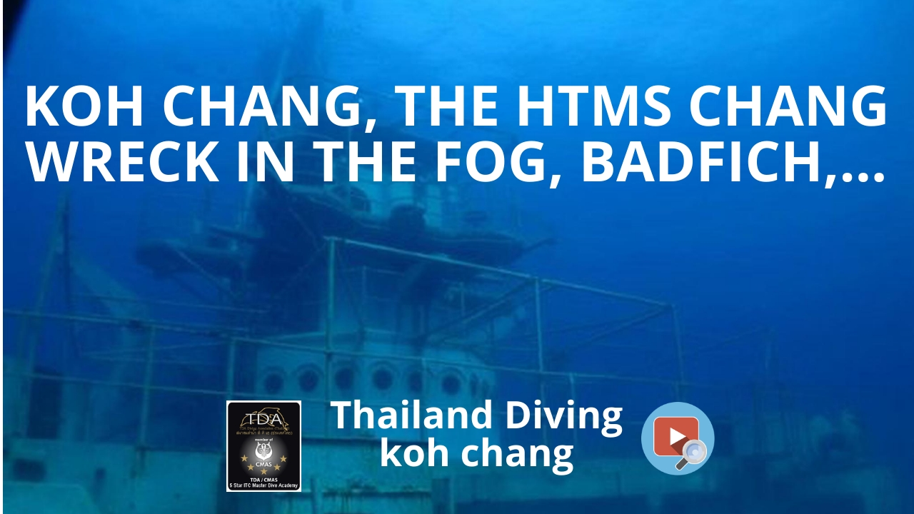 Koh chang, the htms Chang wreck in the fog, badfich,    with the diving club Thailand Diving Pattaya